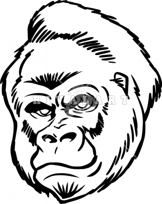 Mean Gorilla Face Drawing